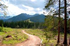 Windend, rotsachtige weg op de bergopen plek Royalty-vrije Stock Fotografie