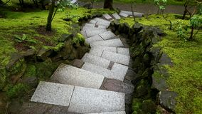 Windende üppige grüne Treppe Stockbilder