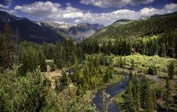 Windende Bergstroom buiten Telluride, Colorado, de Zomer royalty-vrije stock fotografie