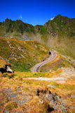 Windende bergweg Royalty-vrije Stock Fotografie