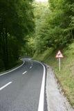 Windende de krommeweg van het asfalt in een beukbos stock foto's