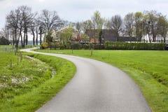 Windende landweg in Nunspeet Royalty-vrije Stock Afbeeldingen