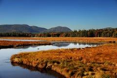 Windende rivier, de herfst bos en verre berg stock afbeelding