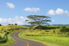 Windende straat Kauai stock afbeelding
