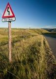 Windende weg in platteland stock afbeelding