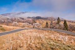 Windende weg in berg Bieszczady. Stock Afbeeldingen
