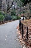 Windende Weg in Central Park Royalty-vrije Stock Afbeelding