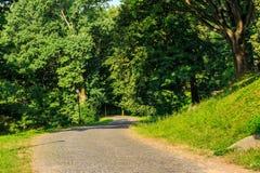 Windende weg in de verticaal van het stadspark Stock Afbeelding