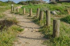 Windende weg die van het strand naar omhoog dichtbij Porto Covo, Portugal leiden Royalty-vrije Stock Afbeeldingen
