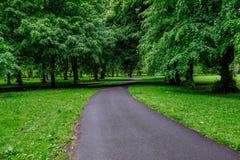 Windende weg door de bomen in Bute-Park, Cardiff, Wales stock foto