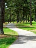 Windende weg door park Stock Afbeelding