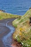 Windende weg langs Ierse Kust, Noord-Ierland Royalty-vrije Stock Foto's