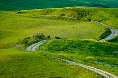 Windende weg in Toscanië Royalty-vrije Stock Foto