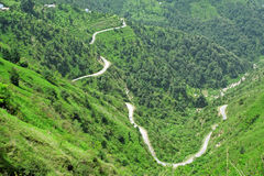 Windende wegen van het Himalayagebergte, India Stock Fotografie