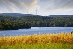 Windenergie in de beautyful kant van het land stock fotografie