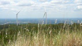Windenergietrantsoenen in het midden van de natuur, 'gorge' en 'bomen sky background', 'Energy generator'-vriendelijk' stock videobeelden