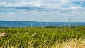 Windenergietrantsoenen in het midden van de natuur, 'gorge' en 'bomen sky background', 'Energy generator'-vriendelijk' stock footage