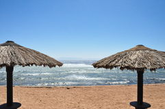 Winderig strand Stock Afbeeldingen
