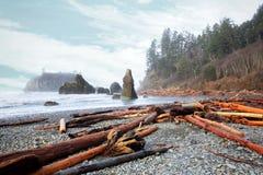 Winderig strand rond het Olympische Schiereiland, WA, de V.S. Stock Fotografie