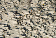 Winderig zand Stock Foto's