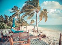 Winderige tropische strandscène Royalty-vrije Stock Afbeelding