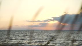 Winderige zonsondergang stock videobeelden