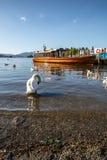 Windermere Lake England UK Royalty Free Stock Photography