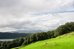 Windermere Lake in  English Lake District National Park, Cumbria Royalty Free Stock Photography