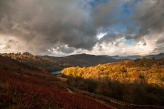 Windermere område för sjö, sjö, Cumbria, England Royaltyfria Foton