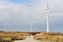 windfarm Royaltyfri Bild