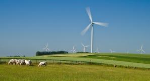 windfarm 库存照片