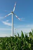 Windfarm Zdjęcie Royalty Free