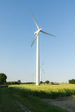 Windfarm Fotografia Royalty Free