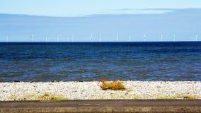 Windfarm Imagenes de archivo