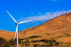 Windfarm on a bright sunny day Royalty Free Stock Photos