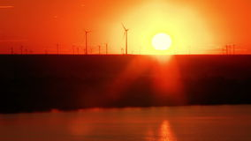 Windfarm in the danube delta at sunset stock video footage
