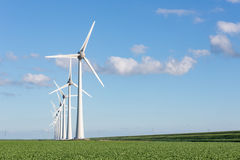 Windfarm in Dutch landscape with field of sugar beets Stock Images