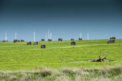 Windfarm on the hill. Windfarm perched on a hill with dark skies in the background Royalty Free Stock Photos