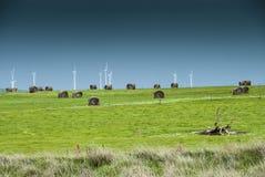 Windfarm na wzgórzu Zdjęcia Royalty Free