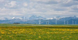 Windfarm at Pincher Creek Royalty Free Stock Photos