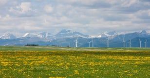 Windfarm at Pincher Creek royalty free stock photos