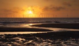Windfarm a pouca distância do mar no nascer do sol Imagens de Stock