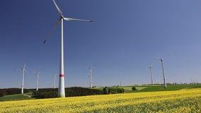 Windfarm_rapeseed stock video