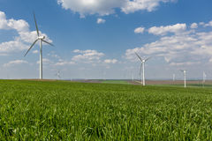 Windfarm. In a rural camp Royalty Free Stock Image