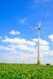 Windfarm, wiejski krajobraz Obraz Royalty Free