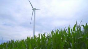 Windgenerator op graangebied Panning van groene bladeren om generator te winden stock footage