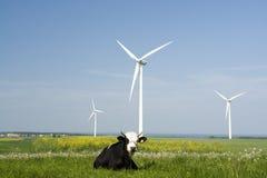 Windgeneratoren und -kuh stockfotografie