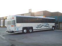 Windhund-Bus lizenzfreie stockfotografie