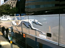 Windhund-Bus-Logo Lizenzfreies Stockbild