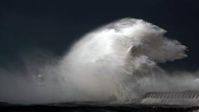 Windige Küste Stockbild